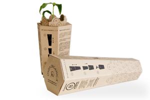 Packaging ecológico reutilizable como maceta